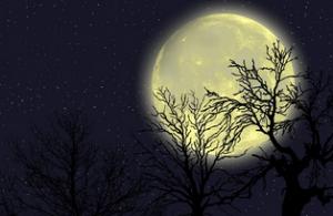 Hechizos fuertes de amor en luna llena