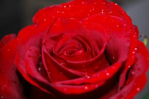 Conjuro de amor facil
