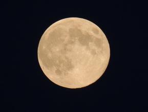 Ritos de amor en luna llena