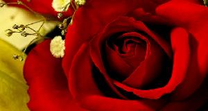 Oraciones milagrosas para el amor