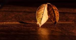 Equinoccio de otoño rituales