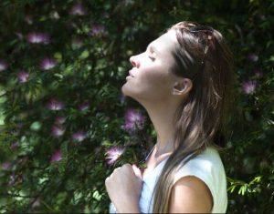 Meditacion y hechiceria