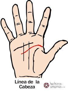 Línea de la cabeza de la mano
