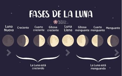 Magia Lunar: Las Fases de la Luna
