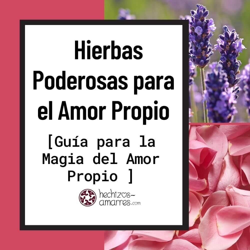 Las Hierbas más Poderosas para la Magia del Amor Propio